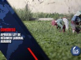 Congreso aprueba Ley de Régimen Laboral Agrario