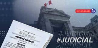 PJ: aprueban el Reglamento Transitorio de Selección y Registro de Jueces