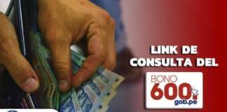Bono 600 soles: consulta si eres beneficiario