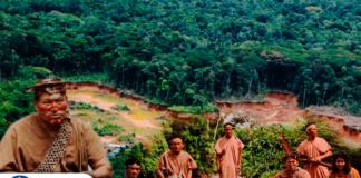 Indígenas amazónicos abandonan sus tierras ante amenazas de traficantes