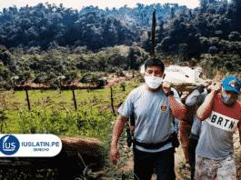 Asesinan a lideresa asháninka en Junín