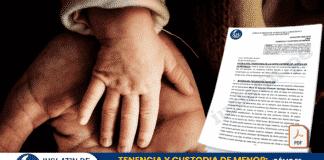 TENENCIA Y CUSTODIA DE MENOR: ¿Cómo se prescribe el régimen de visitas del padre?