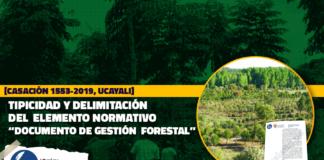 """Tipicidad y delimitación del elemento normativo """"documento de gestión forestal"""