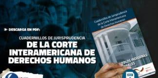 Cuadernillos de Jurisprudencia de la Corte Interamericana de Derechos Humanos PDF