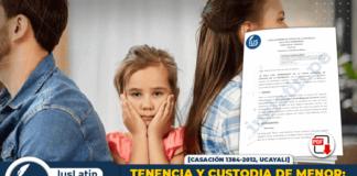Tenencia y custodia de menor: elementos económicos, emocionales y familiares que definen la apropiada crianza del menor