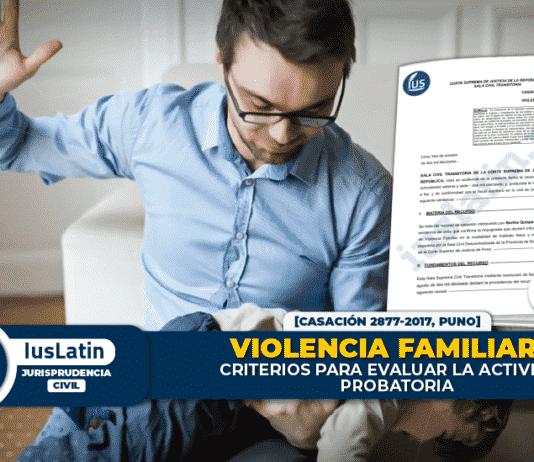 Violencia familiar: criterios para evaluar la actividad probatoria