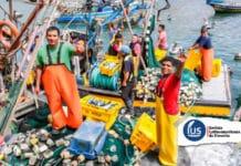 Aprueban transferencia para reactivar economía de pescadores artesanales
