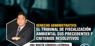 Derecho administrativo el tribunal de fiscalización ambiental, sus precedentes y criterios resolutivos